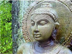 buddhafield-buddha